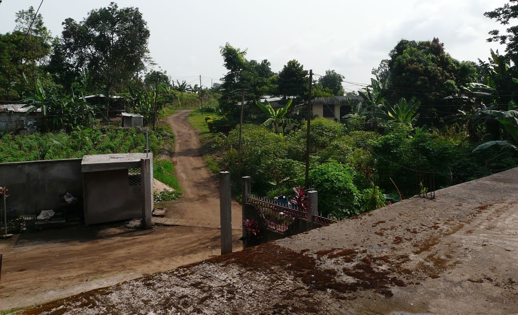 Hallo, Kameroen